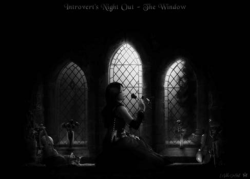 Introvert's Night Out - The Window