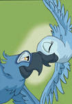 My Favorite Lovebirds : Blu and Jewel
