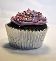 Ugly Cupcake 1 by TheRegalCupcake