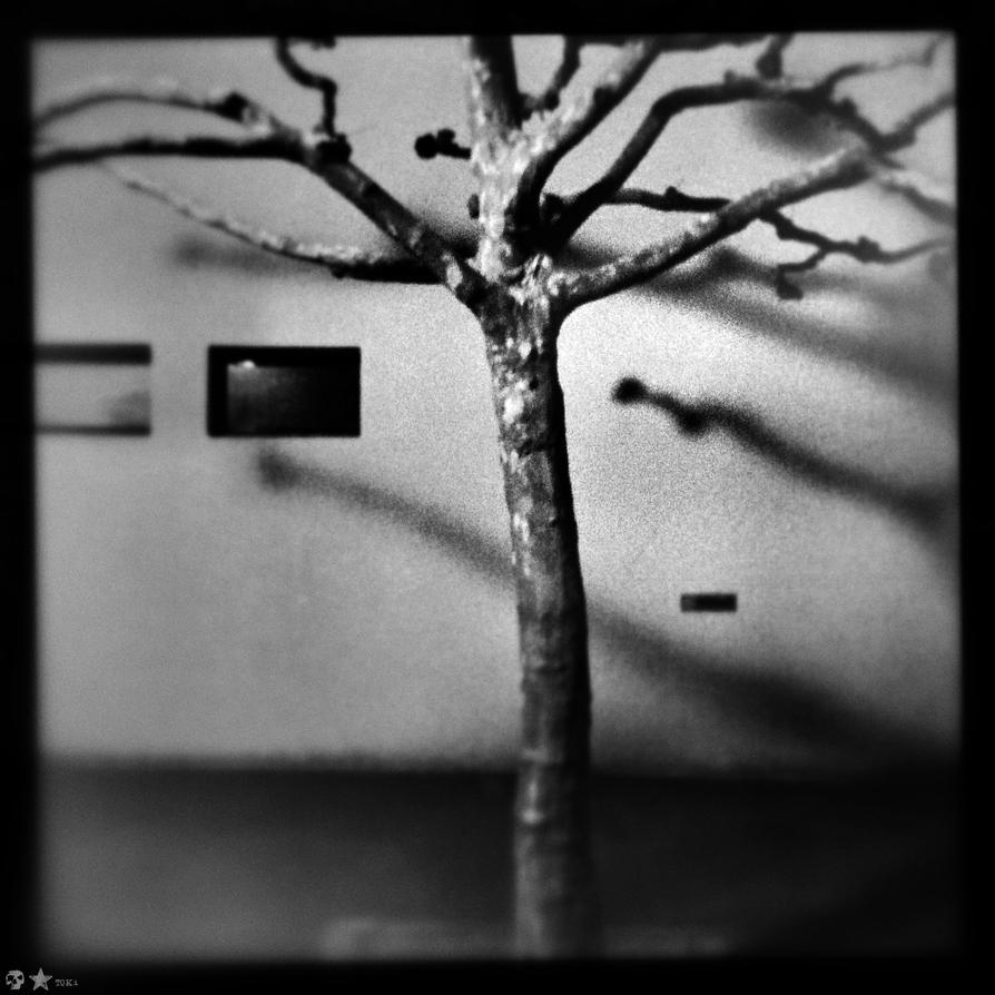 .ENN. by dasTOK