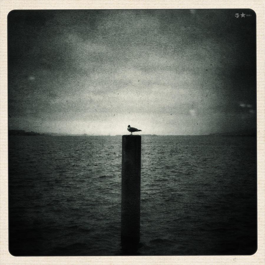 .12.10.26. by dasTOK