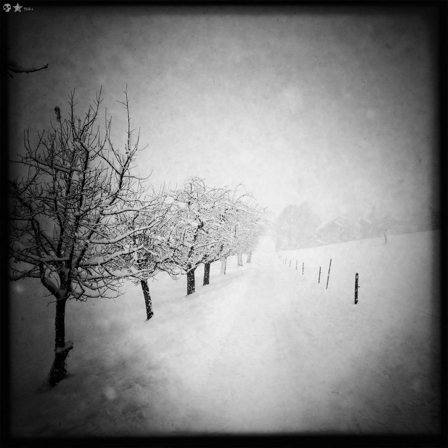 .12.12.02. by dasTOK