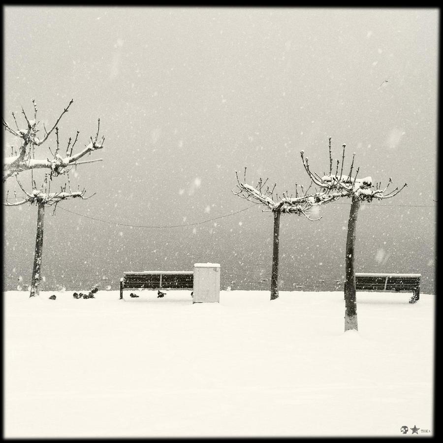 .12.12.07. by dasTOK