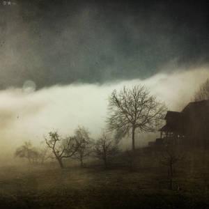 Untitled by dasTOK