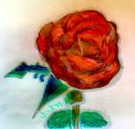 Rose by ArtByJenX