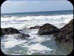 ocean aesthetic f2u by axedog