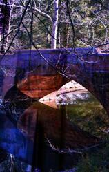 Crossings by Soltis
