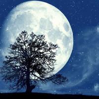 Full moon's glow by morbid-whispers
