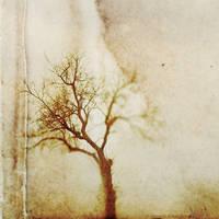 burden by Migrena