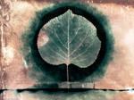 mercury tree