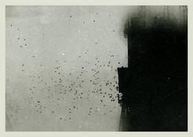 asylum by Migrena