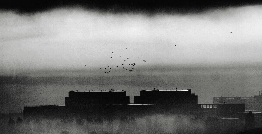 insomnia asylum by Migrena