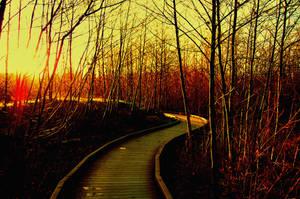 Walk the Light by revolvingradiance