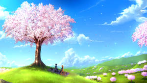 <b>Under The Cherry Blossom</b><br><i>HatschYuh</i>