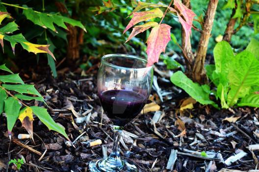 Glass in the Bushhh