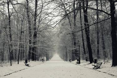 december by olinkava