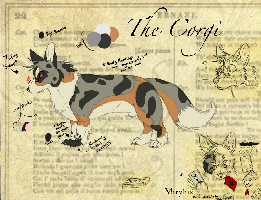The Corgi Ref by miryhis
