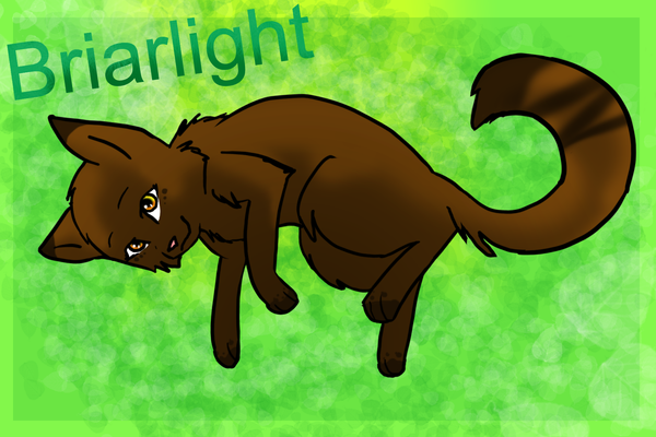 Briarlight By 02wildmixy07 On DeviantArt