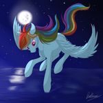 Rainbow Dash - Night flight