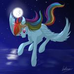 Rainbow Dash - Night flight