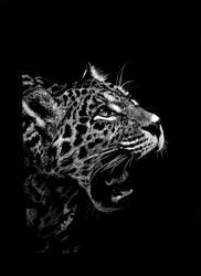 Jaguar - Panthera onca by Ileina