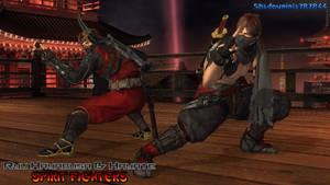 Ryu Hayabusa and Hayate: Spirit Fighters
