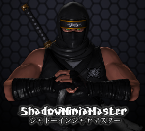 ShadowNinjaMaster's Profile Picture