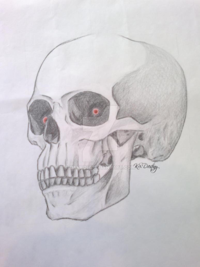 School test: Skull copy by Darboe on DeviantArt