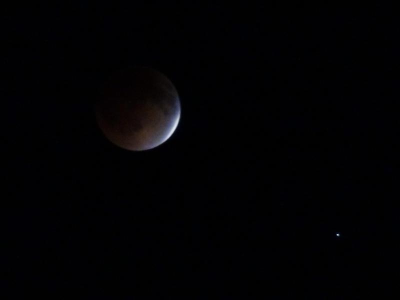April 15, 2014: Tomato Moon by pickymice
