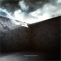 Burning Dreams by EltonFernandes