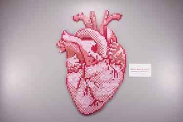 Fuse Bead Anatomical Heart by ManicMadeGeekery