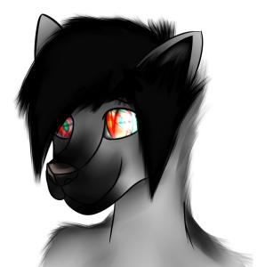 JackWolf1998's Profile Picture