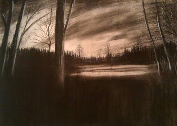 Dark Woods by celdaran