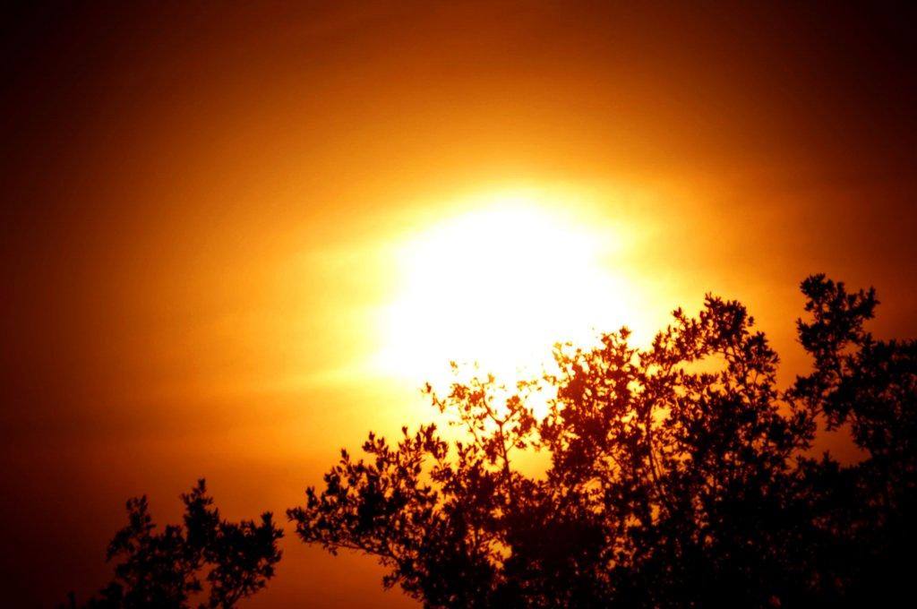 Sunset by celdaran