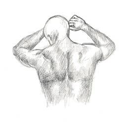 Anatomy Study 27 by radroan
