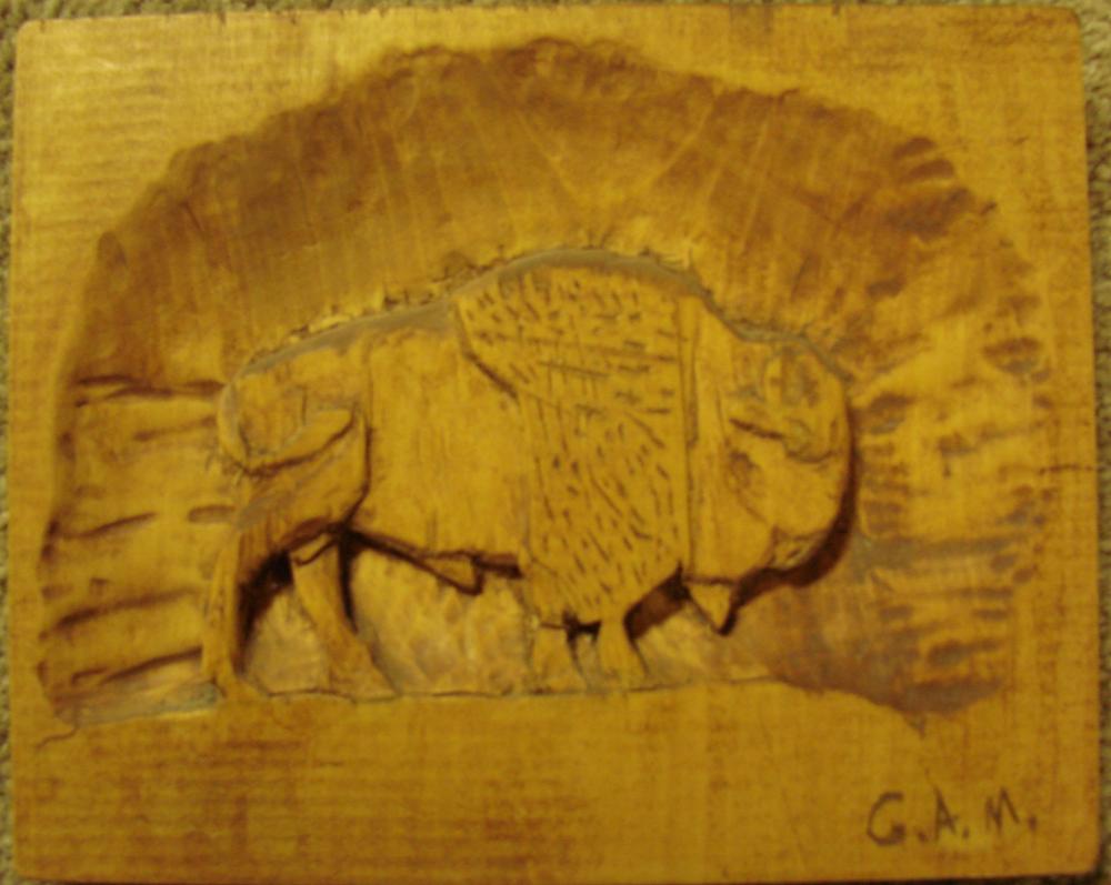Buffalo - Matte by gdoggordon
