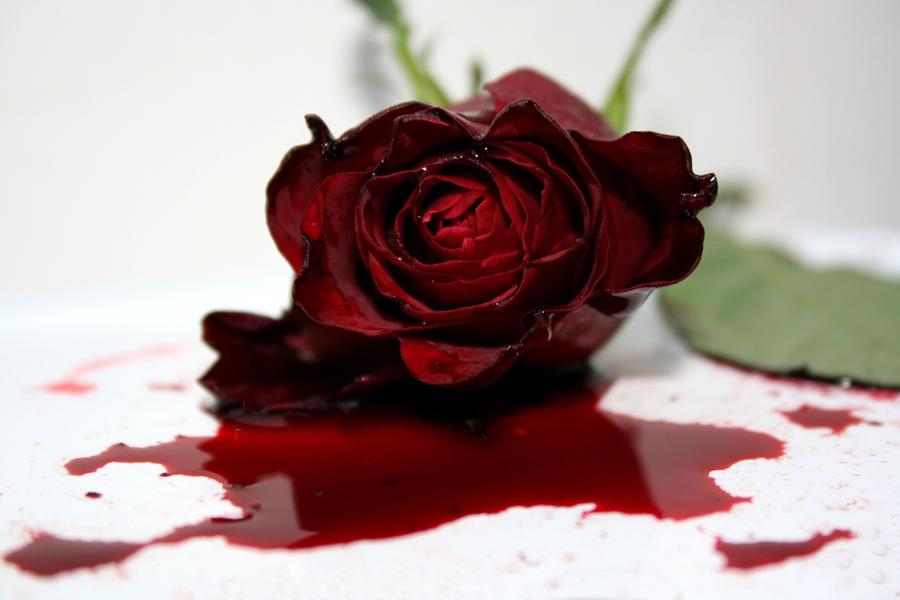 Ternyata, Warna Darah Haid Bantu Kenali Kondisi Kesehatan Wanita