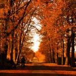 Autumn walk by Janina-Photography