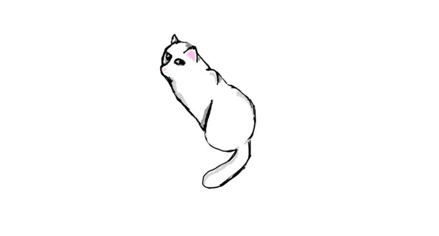 A Slightly Better Cat by dancer2017