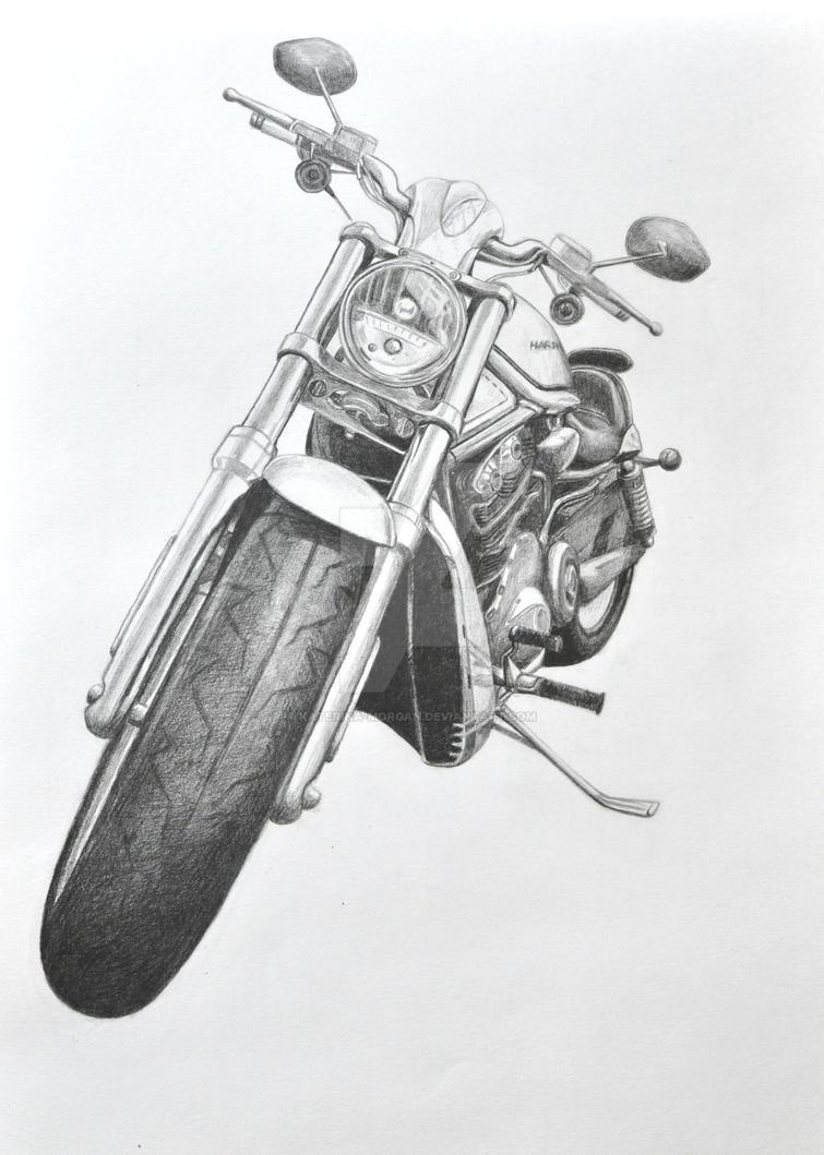 Harley V-Rod by Katerina-Morgan