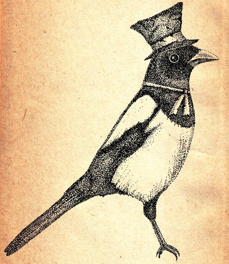 Hello Mister Magpie by VonMonkey