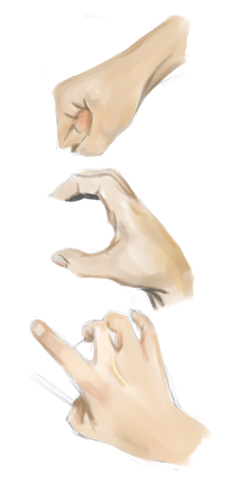 [Image: hands_by_timeandrelativedis-d6d0wem.png]