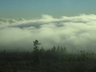 Land within the Clouds