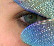 Winged Eye by Kuhkay