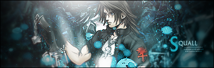 Sole hero?... Firma_squall_by_lunaticporcupine-d3lnfv9