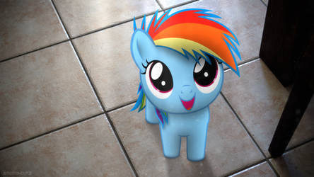 My Happy Little Dashie by StormXF3