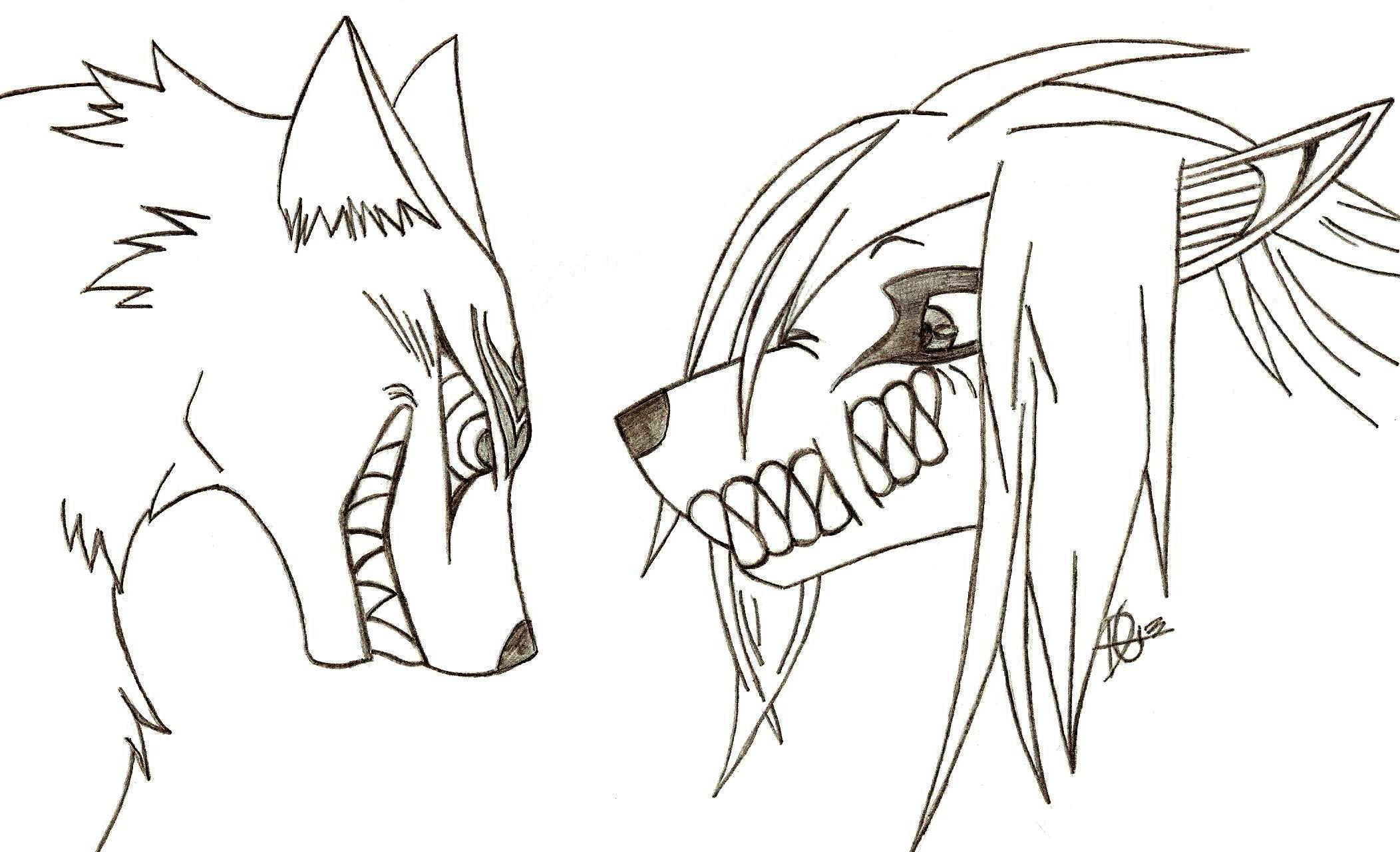 How To Draw Anime Wolves Pt1 By Sugarwolves Madarao And Eren Wolf  Crossover *gift* By Xmaikowolfx