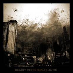 Beauty in the Breakdown by SaltEsc