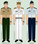 Brazilian Armed Forces - Daily Uniforms 1