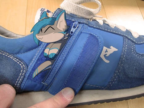ROOS Shoes